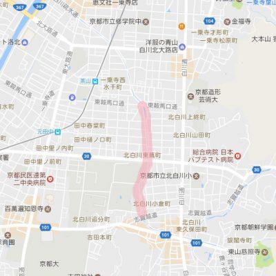 北白川桜 京都 お花見